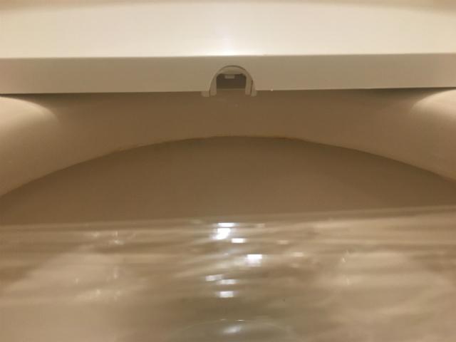 東芝 温水洗浄便座 クリーンウォッシュ パステルアイボリー SCS-T160